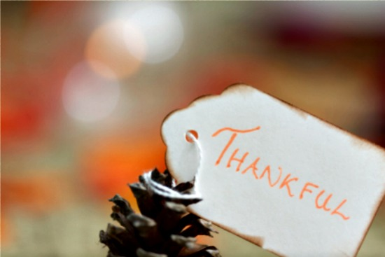 Generating Gratitude This Holiday Season